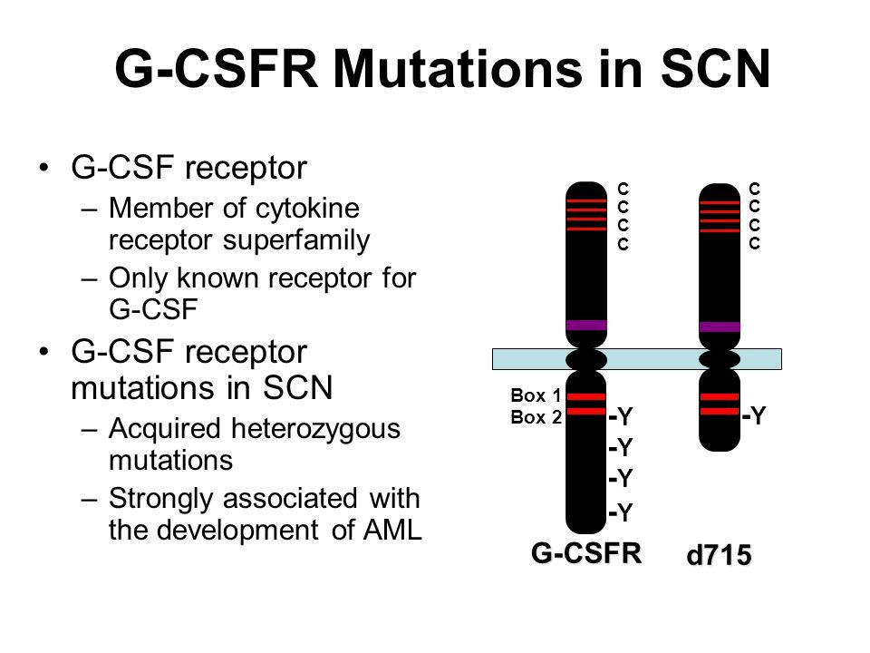 G-CSFR Mutations in SCN