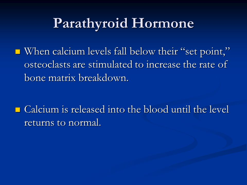 Parathyroid Hormone When calcium levels fall below their set point, osteoclasts are stimulated to increase the rate of bone matrix breakdown.