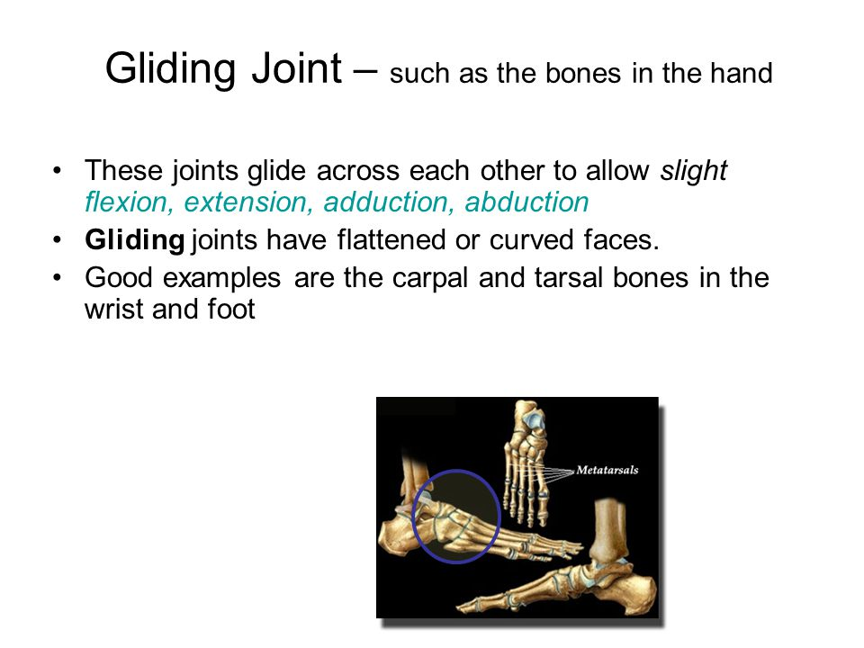 Gliding Joint – such as the bones in the hand