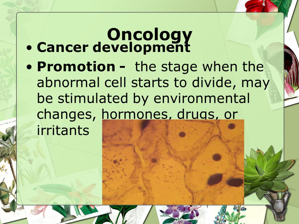 Oncology Cancer development