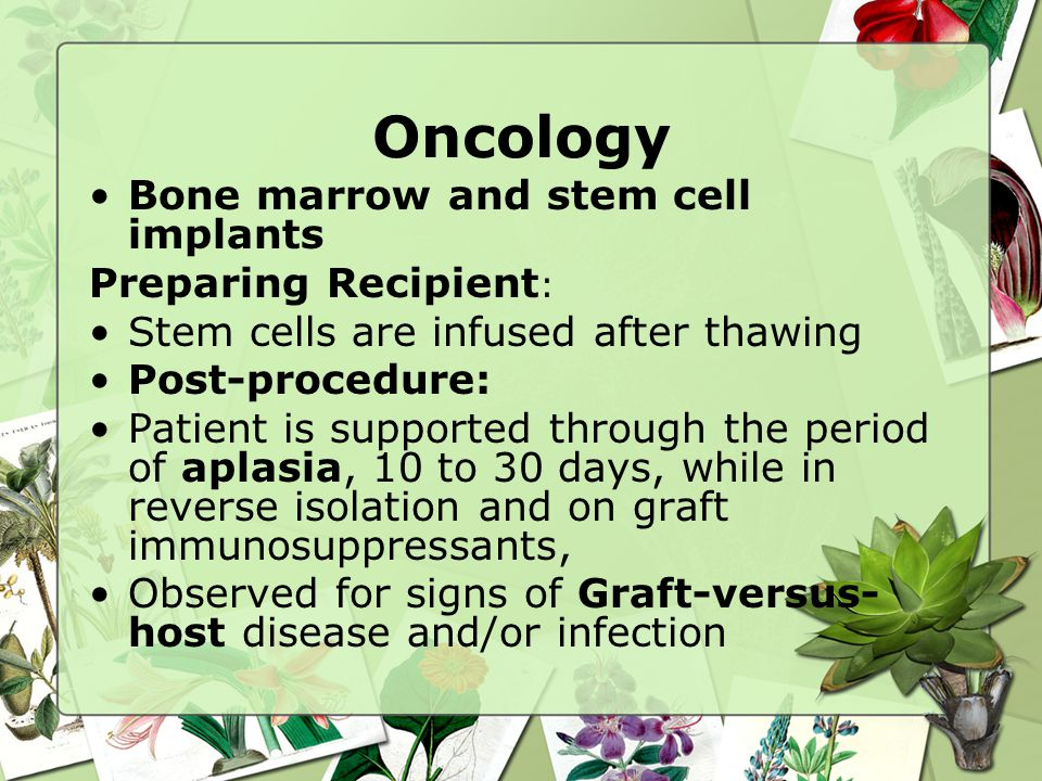 Oncology Bone marrow and stem cell implants Preparing Recipient: