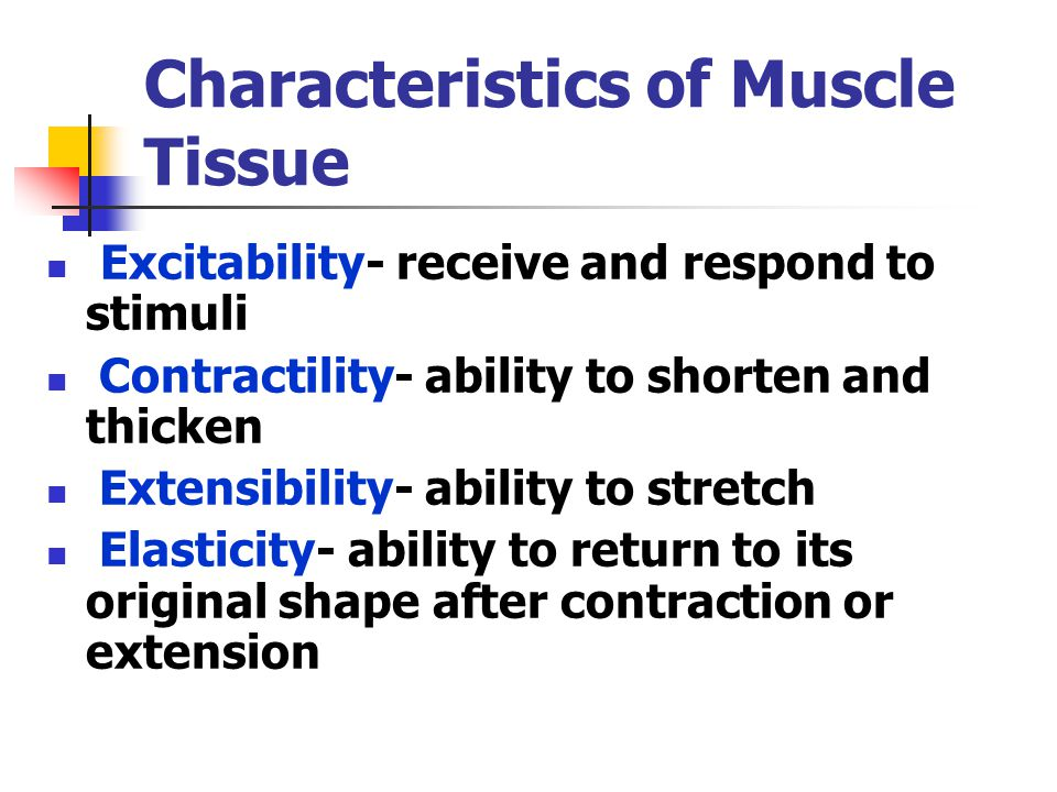 Characteristics of Muscle Tissue