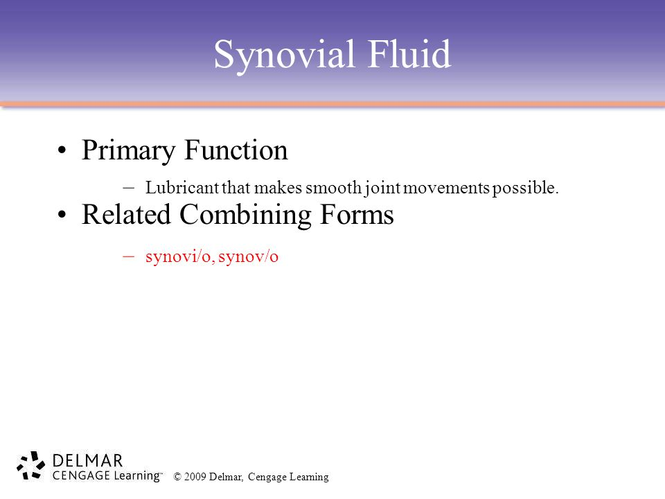 Synovial Fluid Primary Function Related Combining Forms