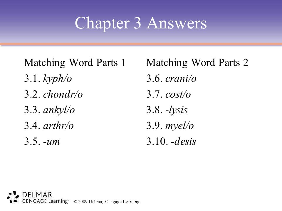 Chapter 3 Answers Matching Word Parts 1 3.1. kyph/o 3.2. chondr/o