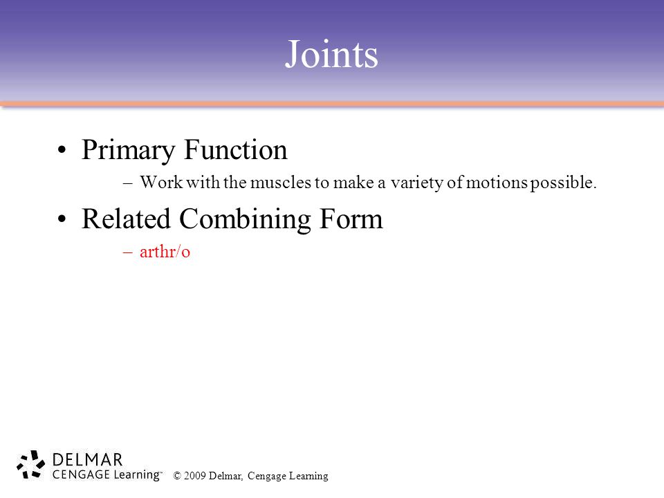 Joints Primary Function Related Combining Form