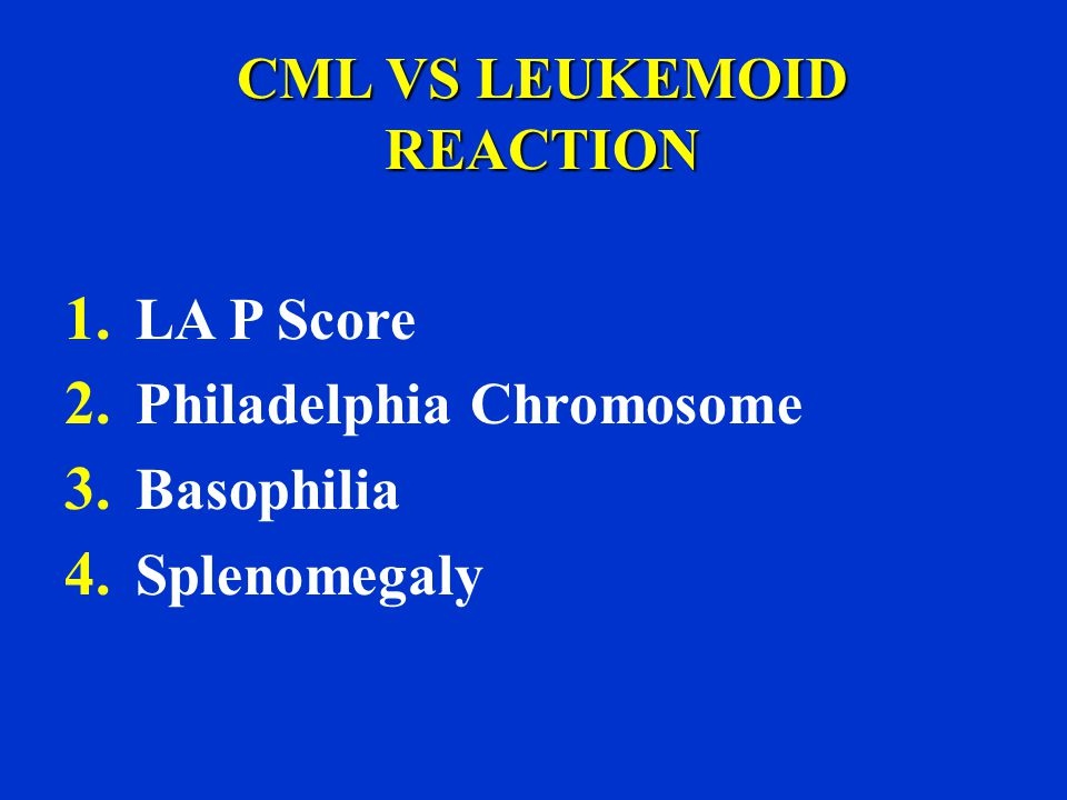 CML VS LEUKEMOID REACTION