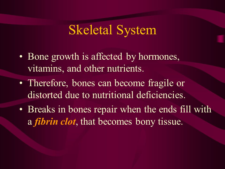 Skeletal System Bone growth is affected by hormones, vitamins, and other nutrients.