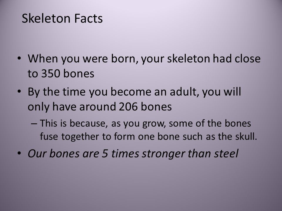 Skeleton Facts When you were born, your skeleton had close to 350 bones. By the time you become an adult, you will only have around 206 bones.