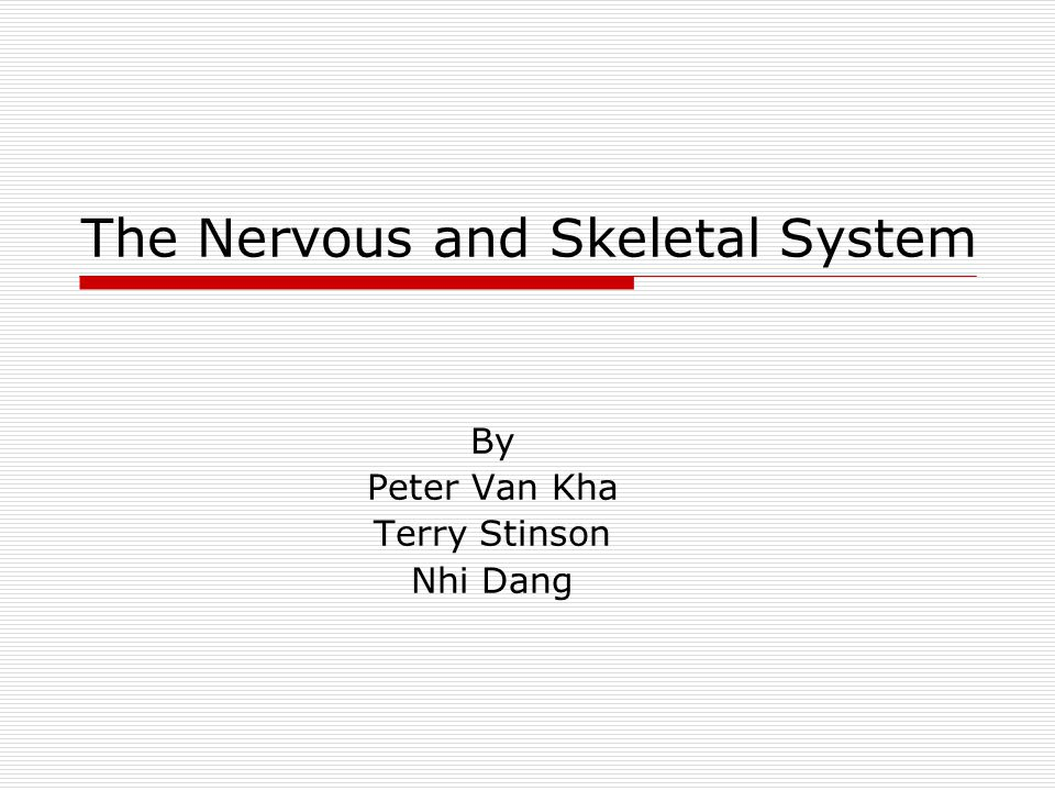 The Nervous and Skeletal System