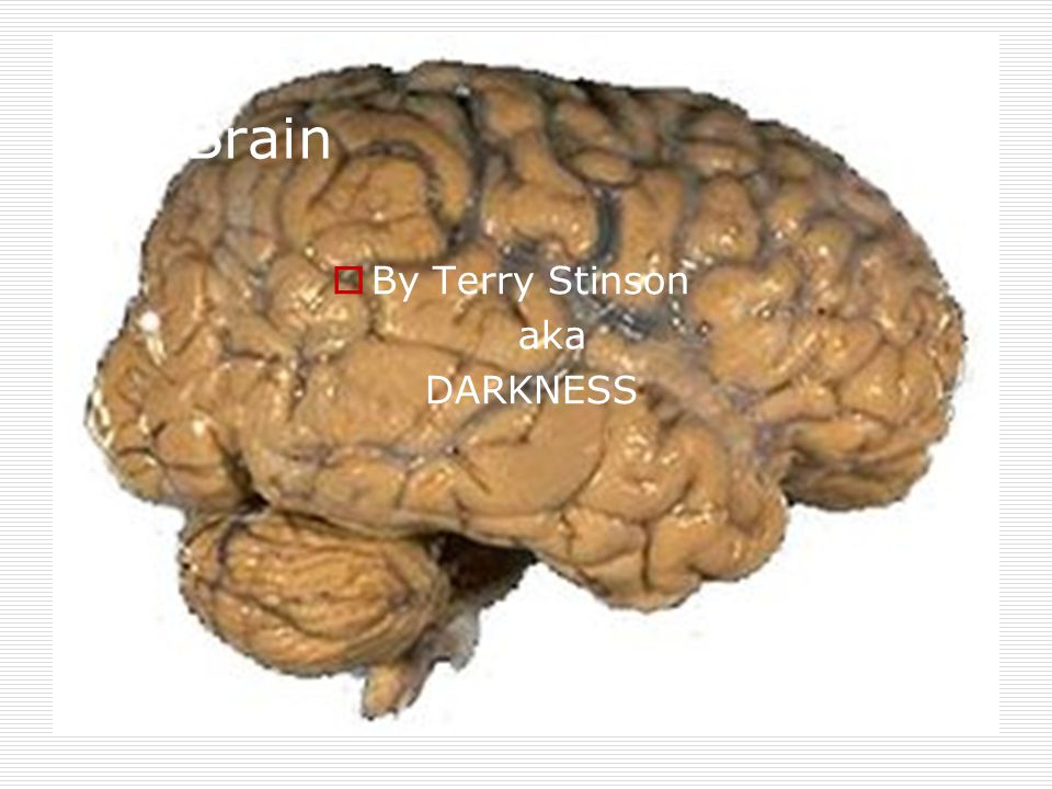 The Brain By Terry Stinson aka DARKNESS