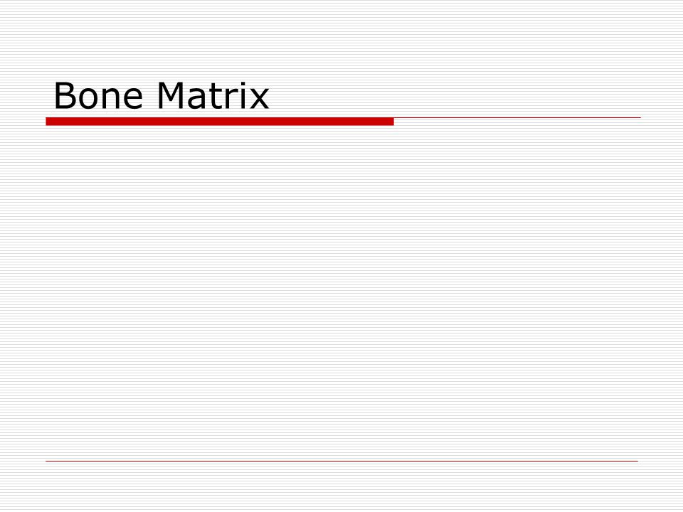 Bone Matrix