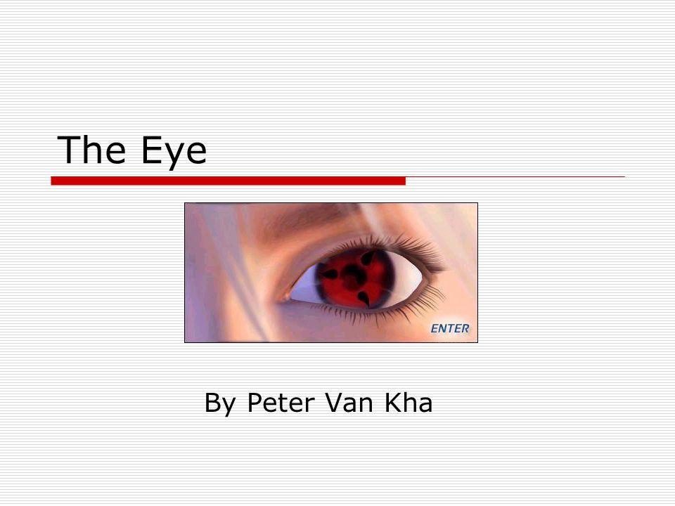 The Eye By Peter Van Kha