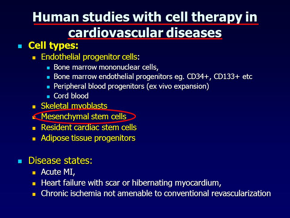 Human studies with cell therapy in cardiovascular diseases