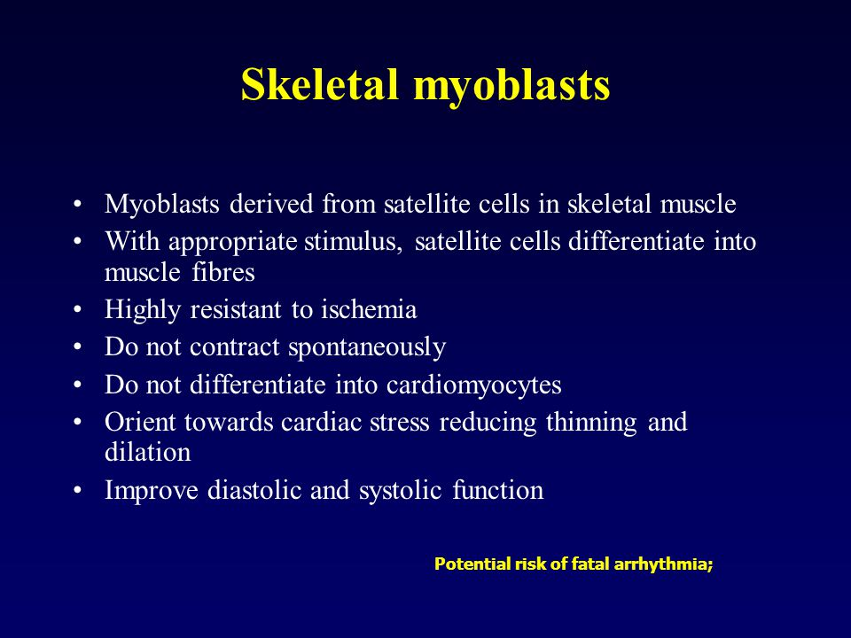 Skeletal myoblasts Myoblasts derived from satellite cells in skeletal muscle.