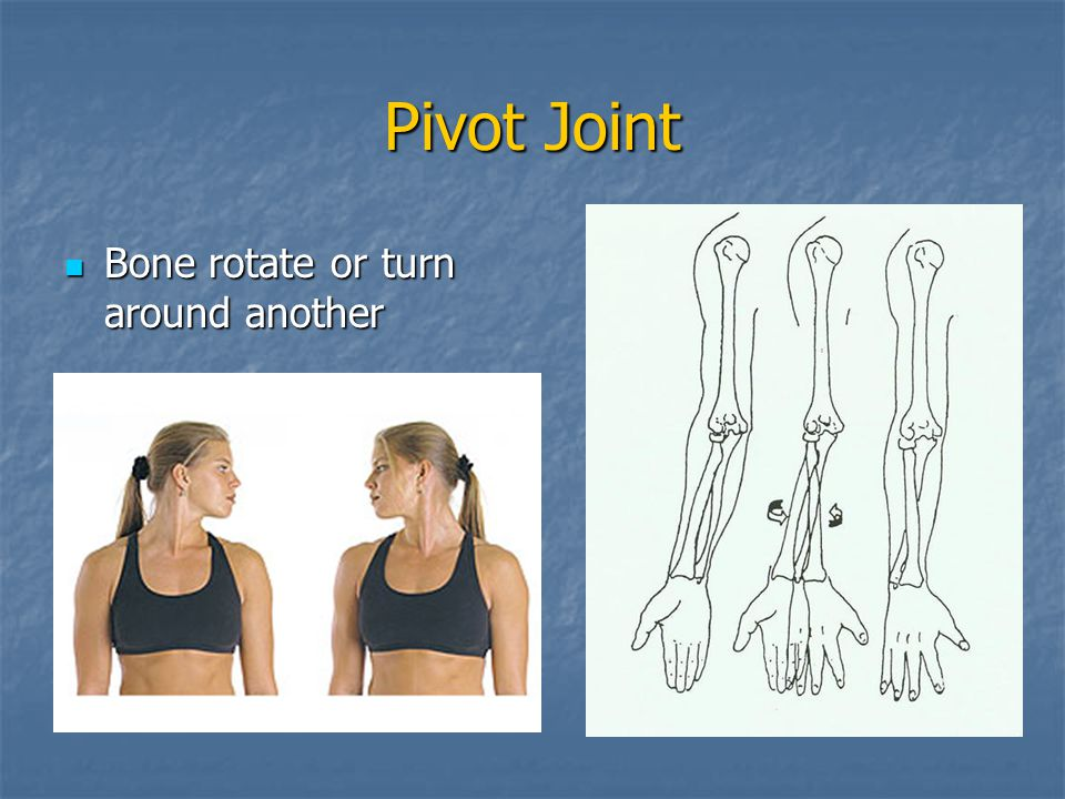 Pivot Joint Bone rotate or turn around another