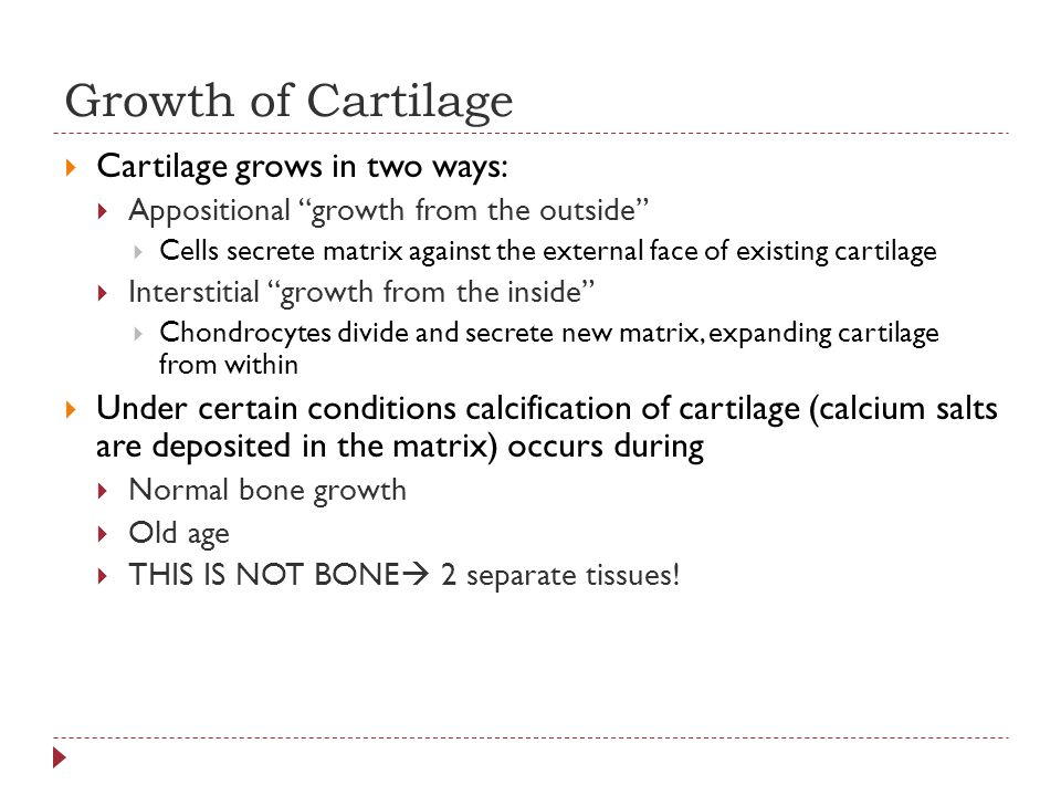 Growth of Cartilage Cartilage grows in two ways:
