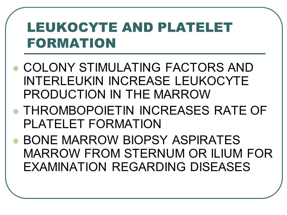 LEUKOCYTE AND PLATELET FORMATION