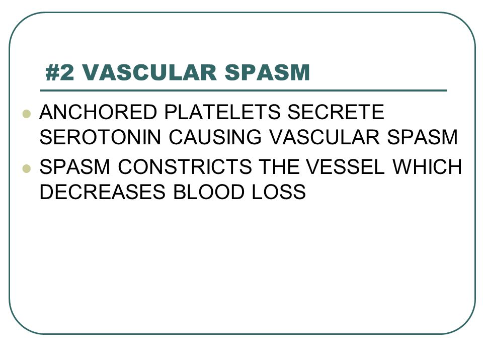 #2 VASCULAR SPASM ANCHORED PLATELETS SECRETE SEROTONIN CAUSING VASCULAR SPASM.