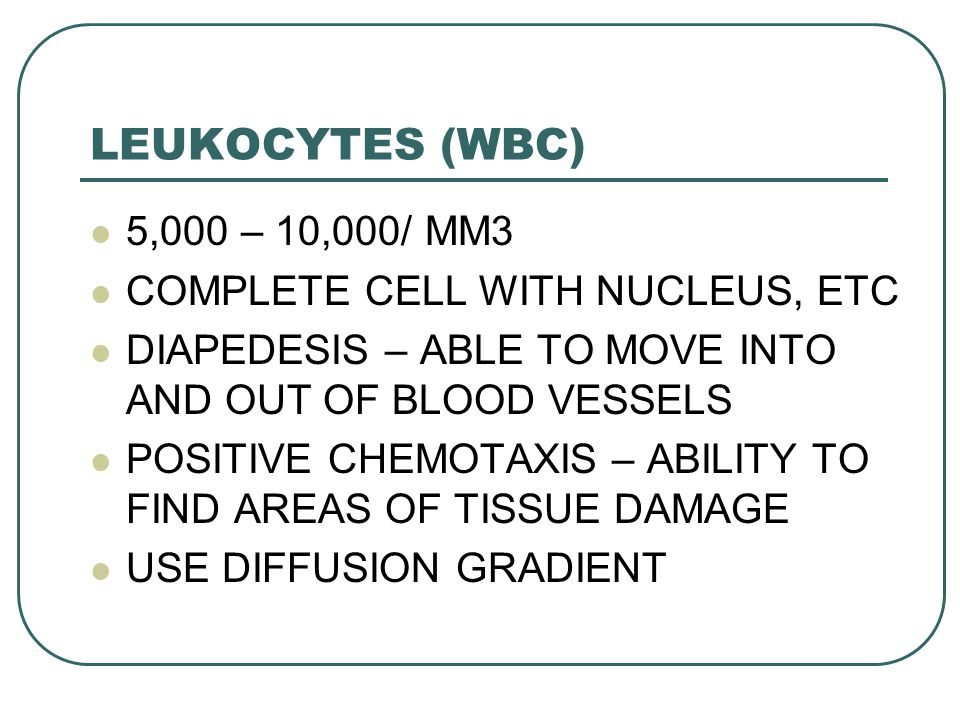 LEUKOCYTES (WBC) 5,000 – 10,000/ MM3 COMPLETE CELL WITH NUCLEUS, ETC