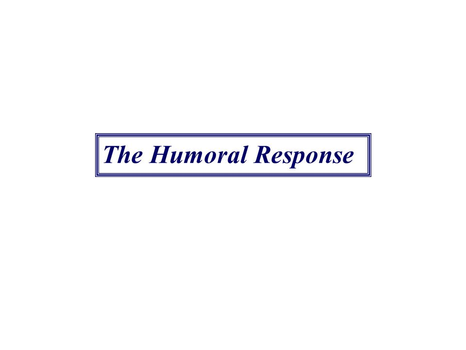 The Humoral Response