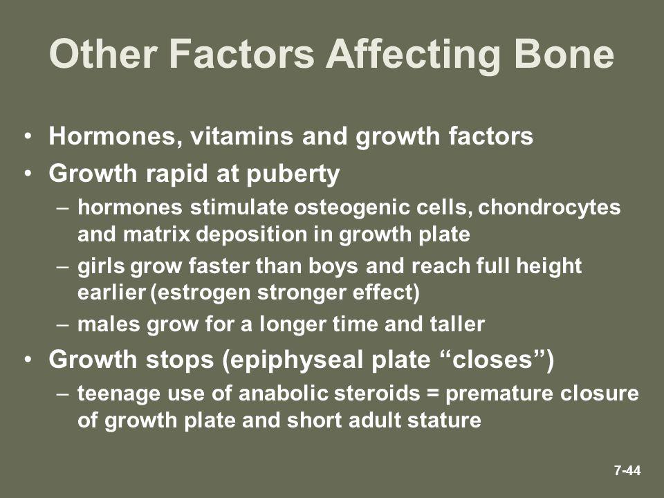 Other Factors Affecting Bone