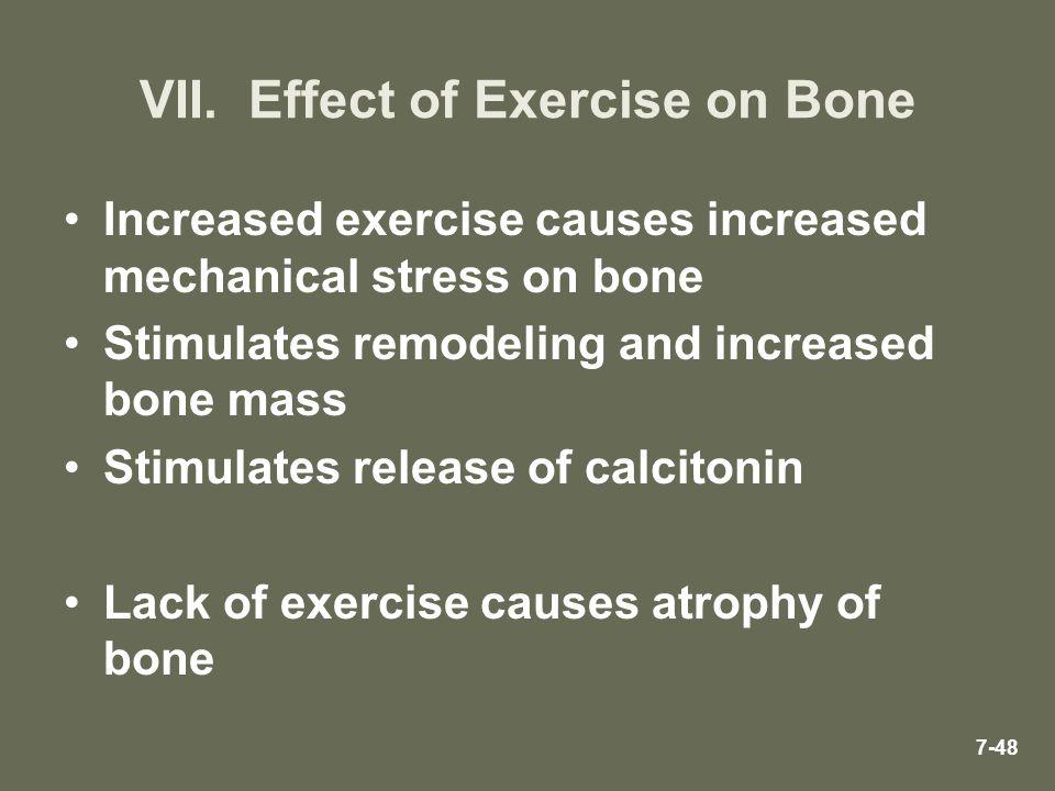 VII. Effect of Exercise on Bone