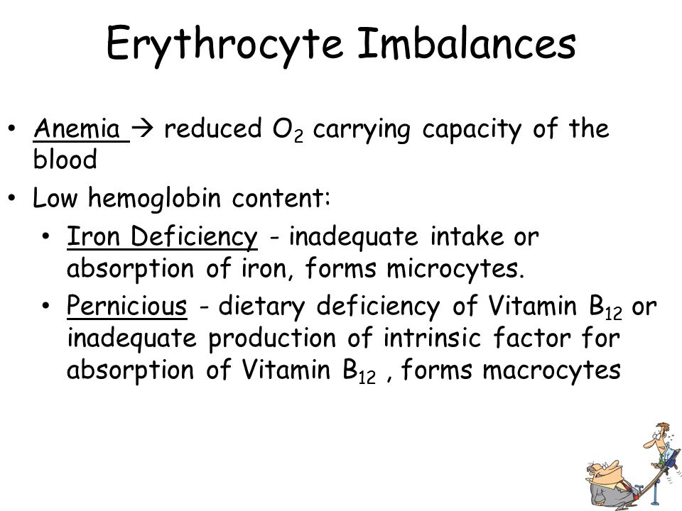 Erythrocyte Imbalances