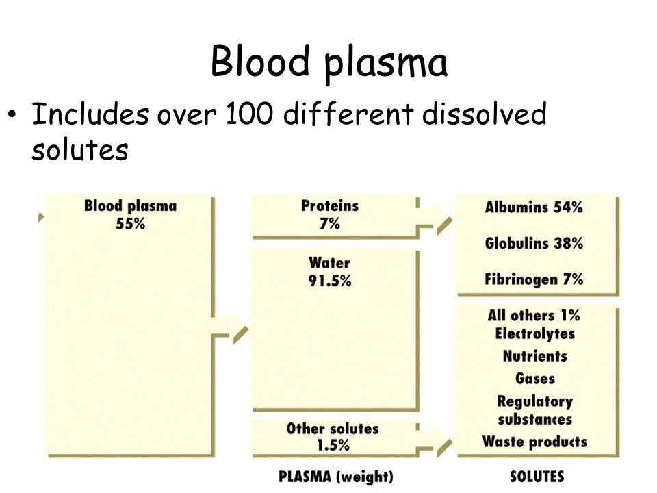 Blood plasma Includes over 100 different dissolved solutes