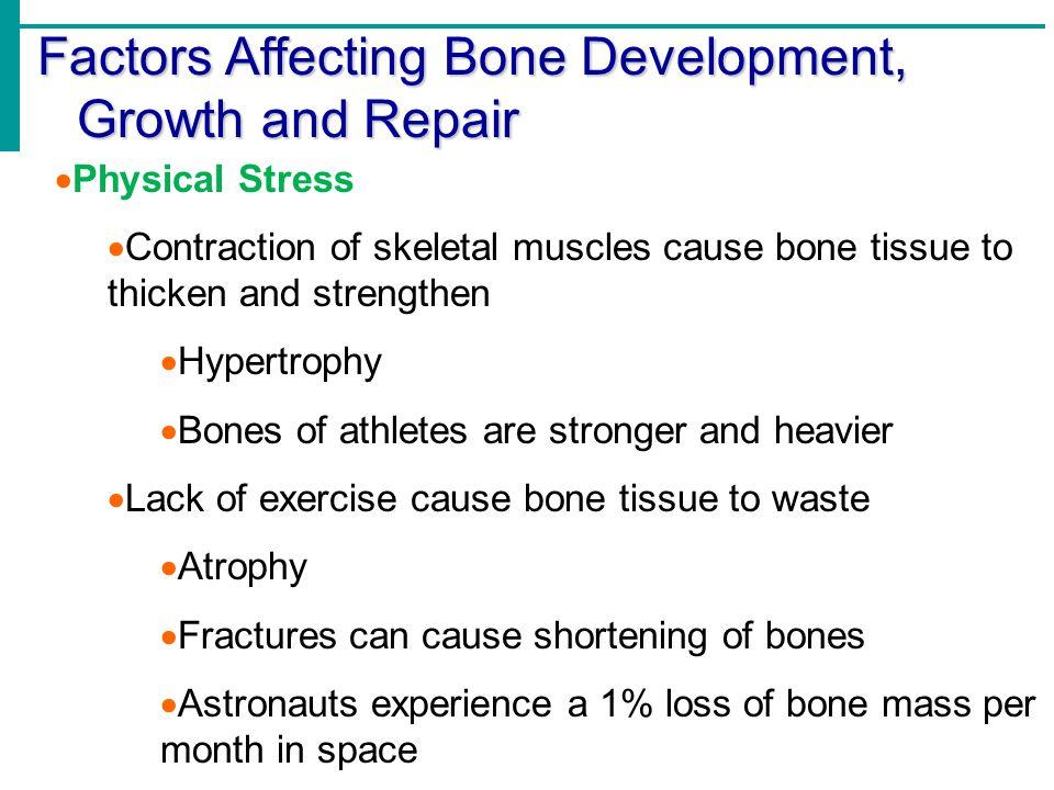 Factors Affecting Bone Development, Growth and Repair