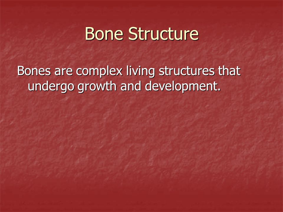 Bone Structure Bones are complex living structures that undergo growth and development.