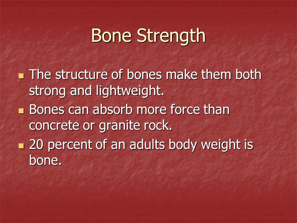 Bone Strength The structure of bones make them both strong and lightweight. Bones can absorb more force than concrete or granite rock.