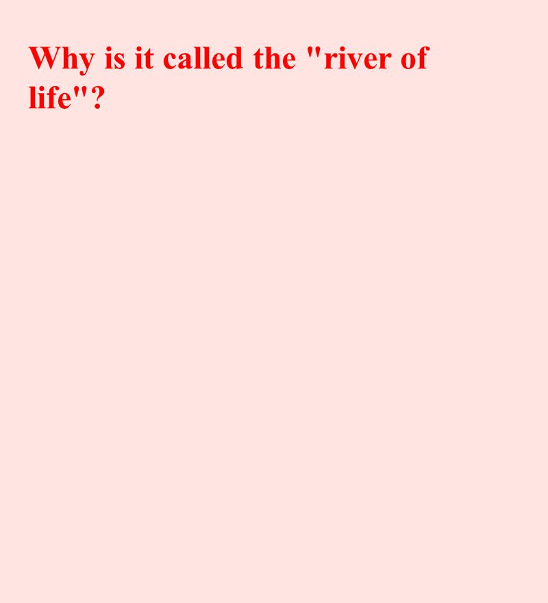 Why is it called the river of life