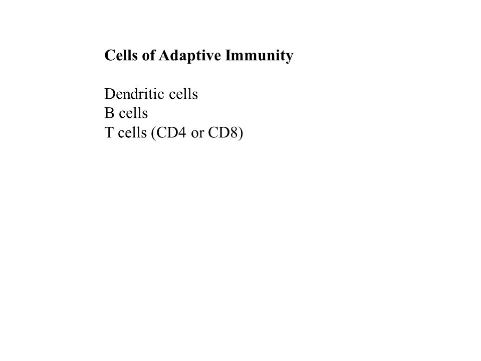 Cells of Adaptive Immunity