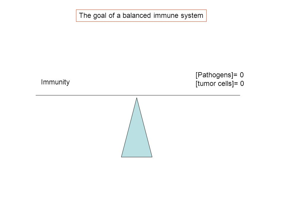 The goal of a balanced immune system