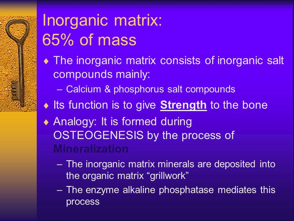 Inorganic matrix: 65% of mass