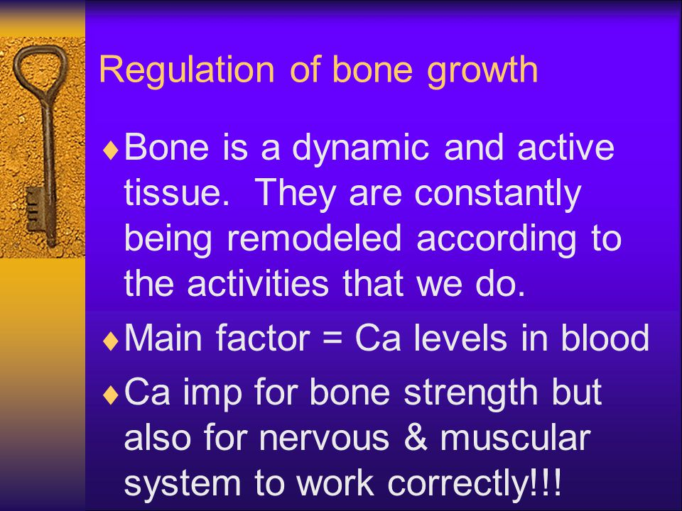 Regulation of bone growth