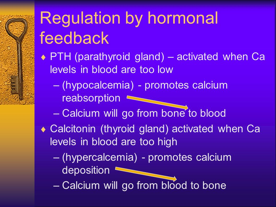 Regulation by hormonal feedback