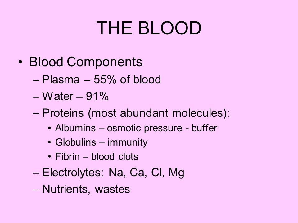 THE BLOOD Blood Components Plasma – 55% of blood Water – 91%