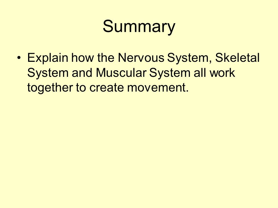 Summary Explain how the Nervous System, Skeletal System and Muscular System all work together to create movement.
