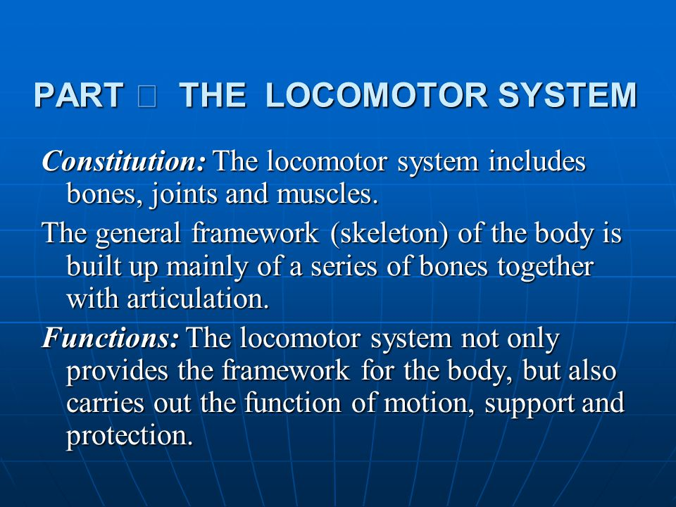 PART Ⅰ THE LOCOMOTOR SYSTEM