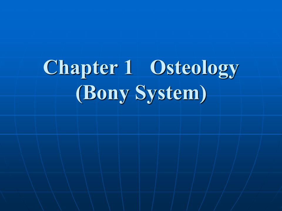 Chapter 1 Osteology (Bony System)