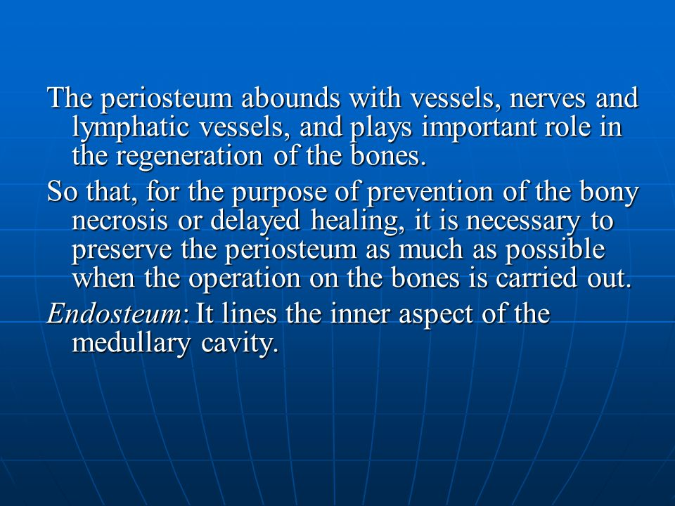 The periosteum abounds with vessels, nerves and lymphatic vessels, and plays important role in the regeneration of the bones.