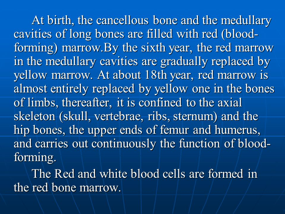 At birth, the cancellous bone and the medullary cavities of long bones are filled with red (blood-forming) marrow.By the sixth year, the red marrow in the medullary cavities are gradually replaced by yellow marrow. At about 18th year, red marrow is almost entirely replaced by yellow one in the bones of limbs, thereafter, it is confined to the axial skeleton (skull, vertebrae, ribs, sternum) and the hip bones, the upper ends of femur and humerus, and carries out continuously the function of blood-forming.