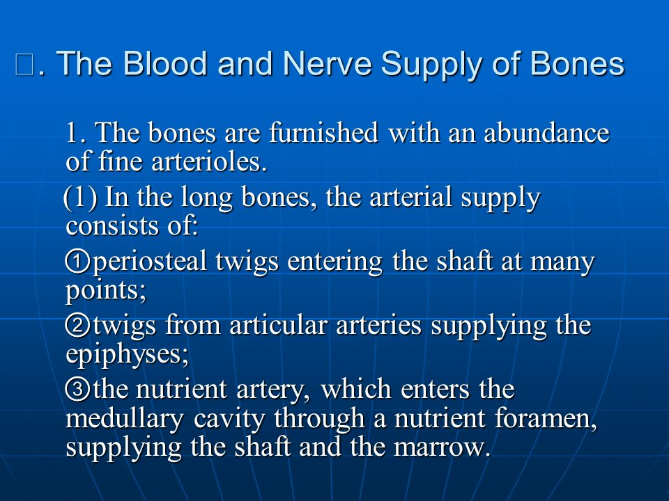Ⅳ. The Blood and Nerve Supply of Bones