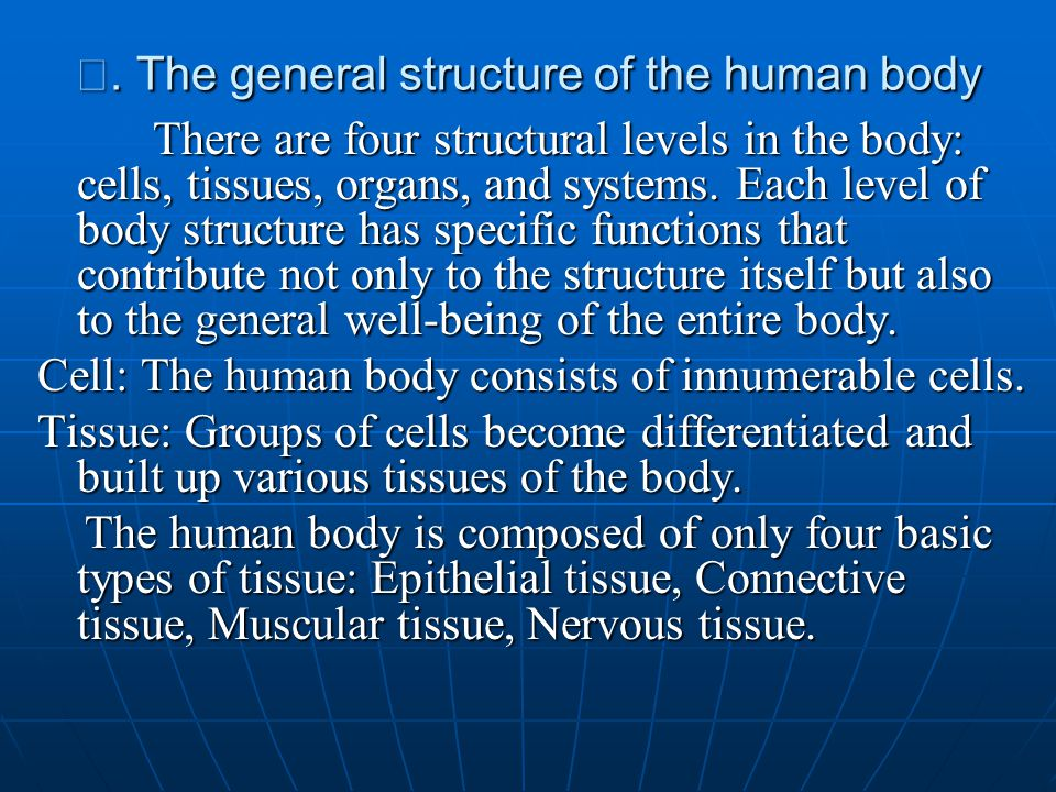 Ⅱ. The general structure of the human body