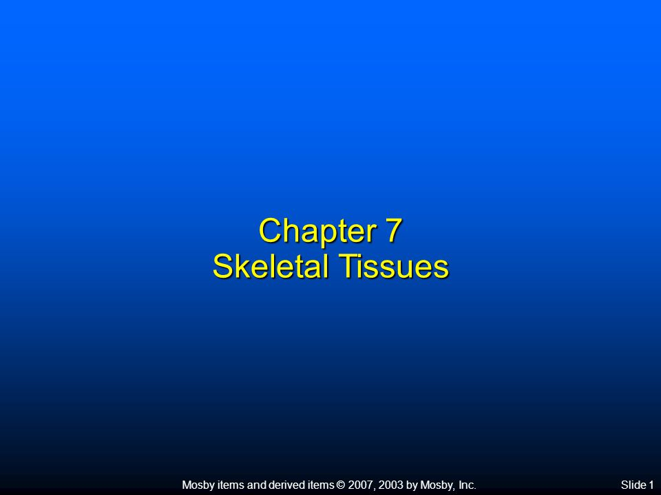 Chapter 7 Skeletal Tissues
