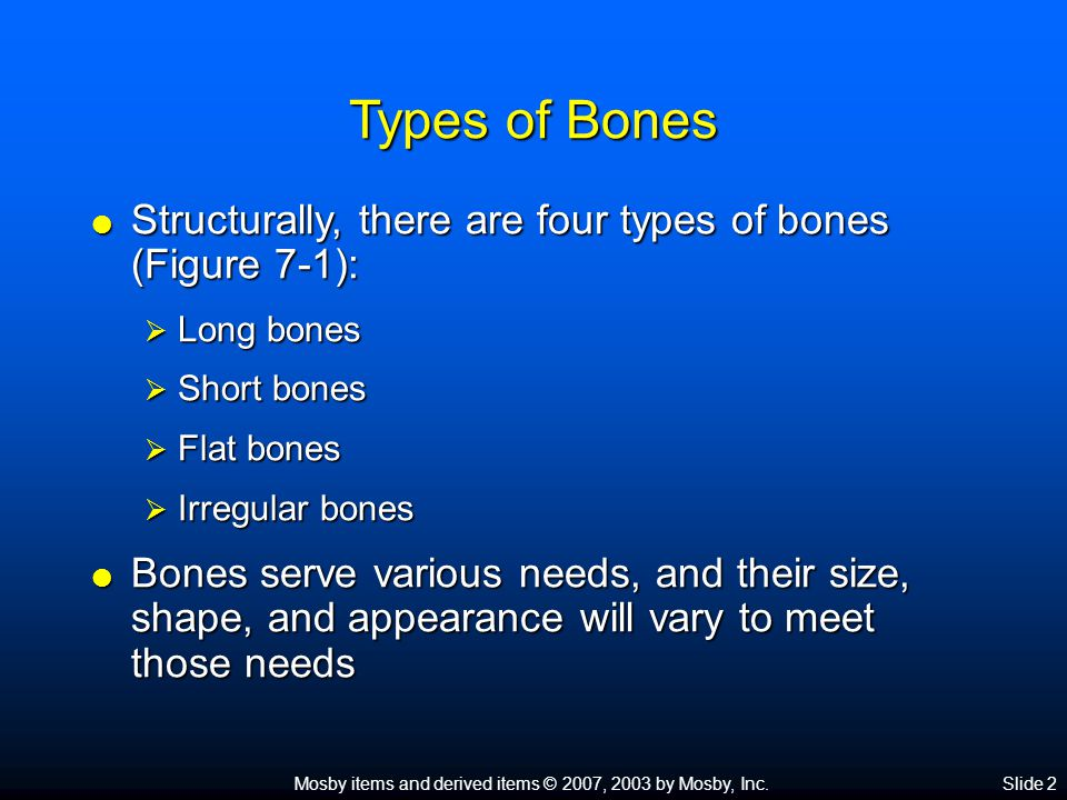 Types of Bones Structurally, there are four types of bones (Figure 7-1): Long bones. Short bones.