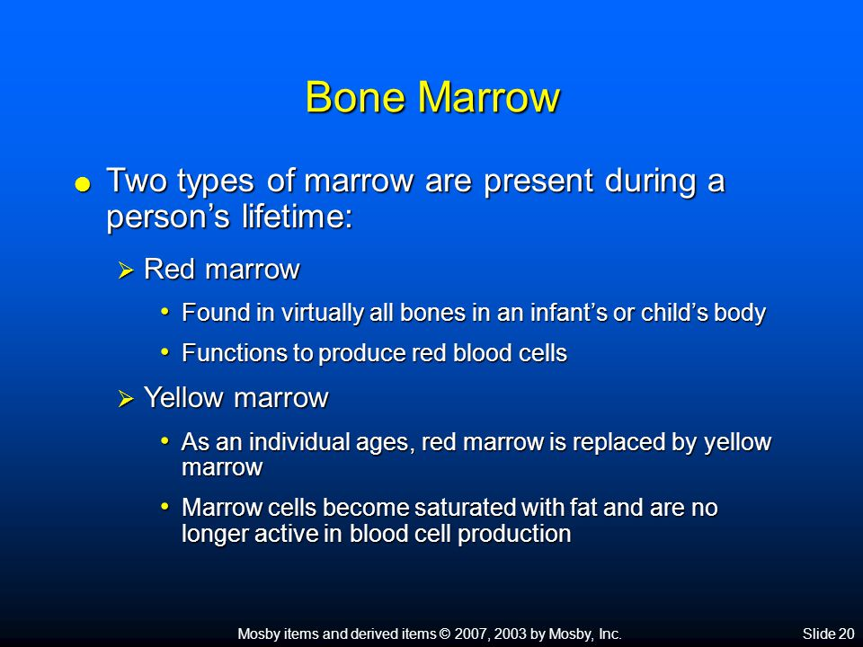 Bone Marrow Two types of marrow are present during a person's lifetime: Red marrow. Found in virtually all bones in an infant's or child's body.