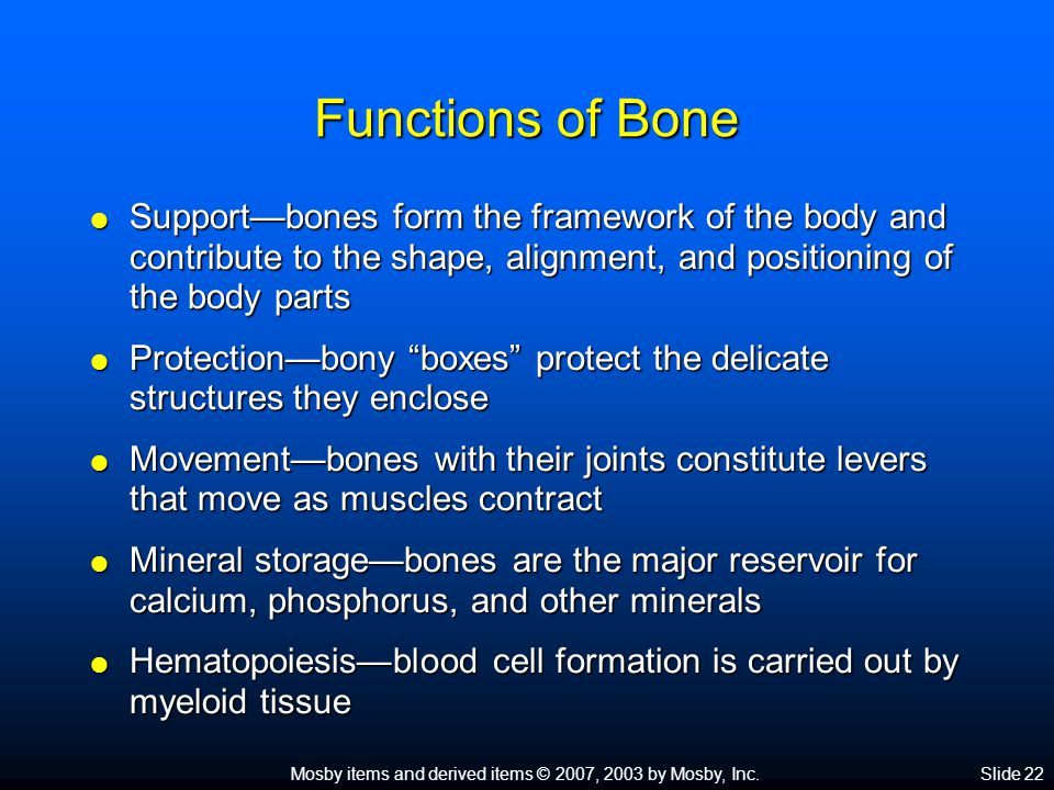 Functions of Bone Support—bones form the framework of the body and contribute to the shape, alignment, and positioning of the body parts.