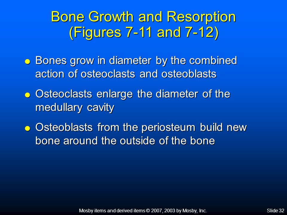 Bone Growth and Resorption (Figures 7-11 and 7-12)